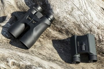 what to look for when buying binoculars for birding
