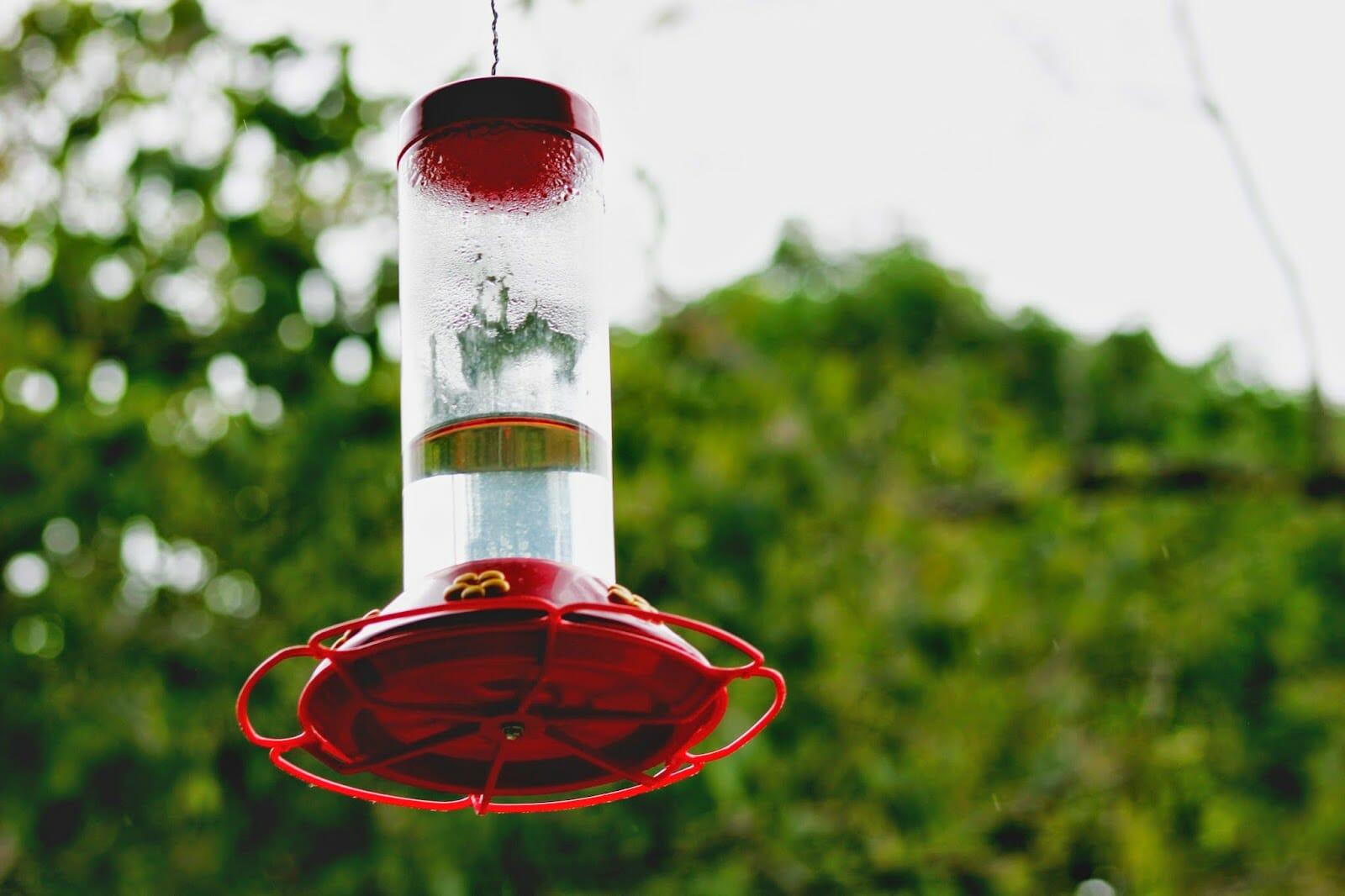 why does my hummingbird feeder get air locked