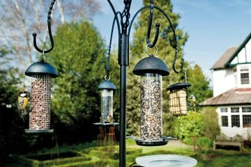 best bird feeder pole