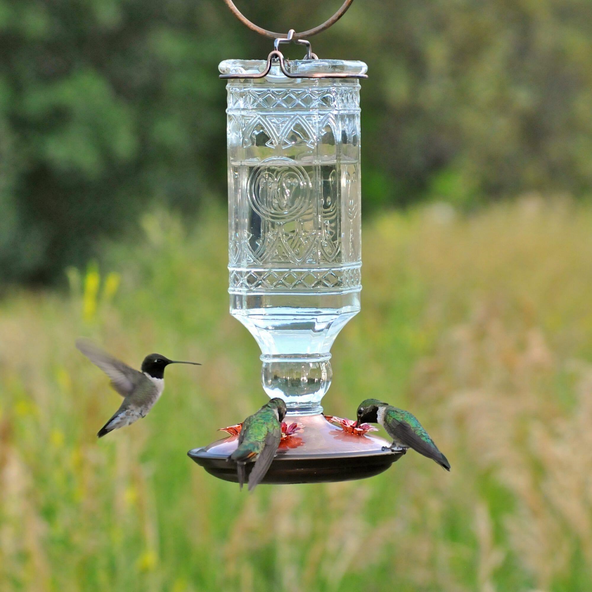 bottle feeder