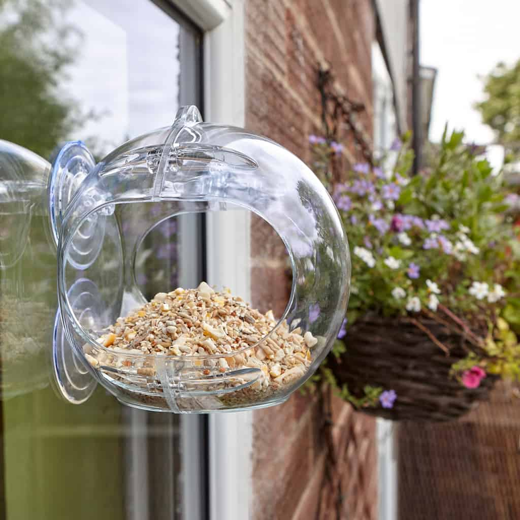 best bird feeder for apartments