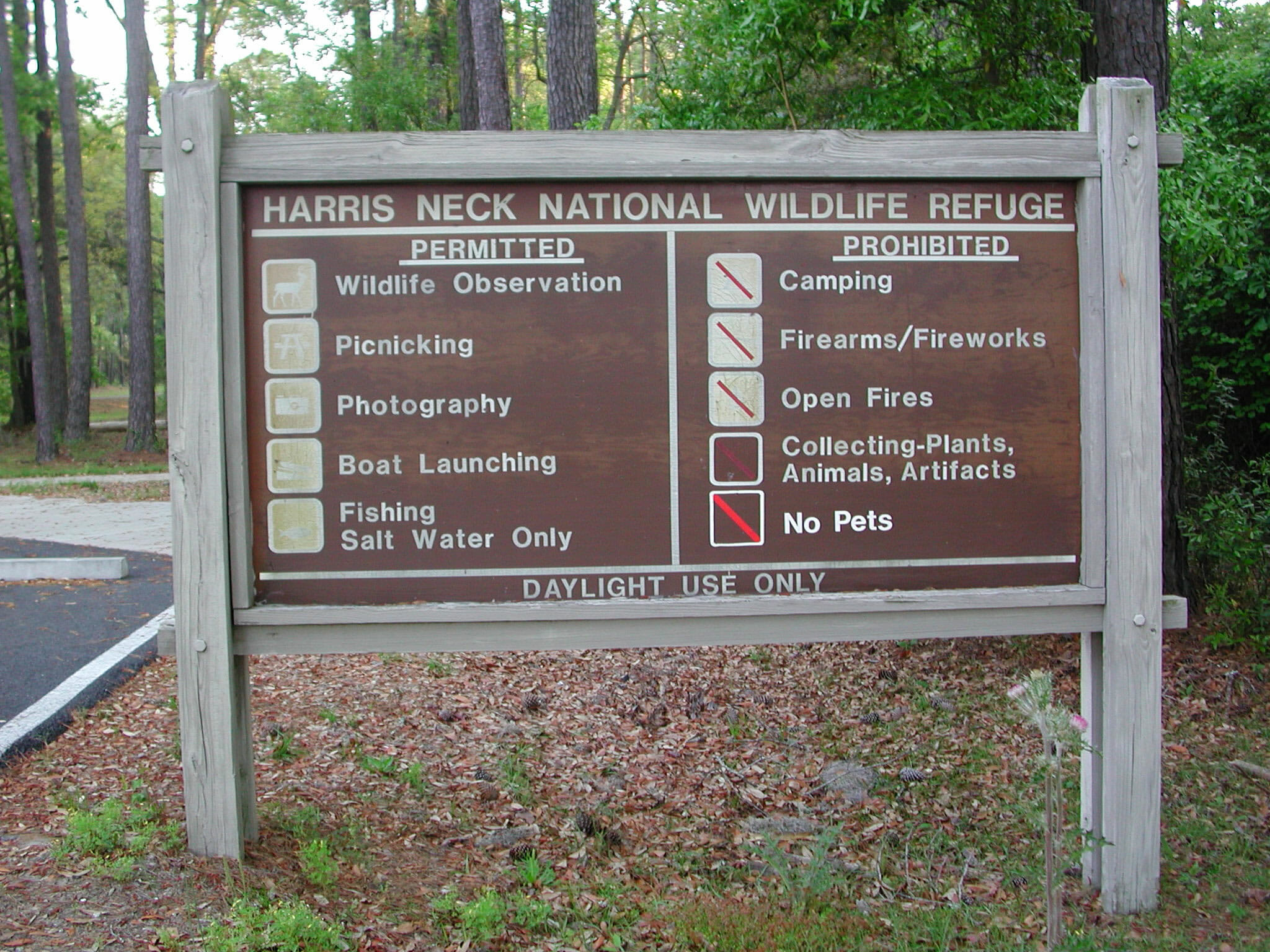 harris neck national wildlife refuge