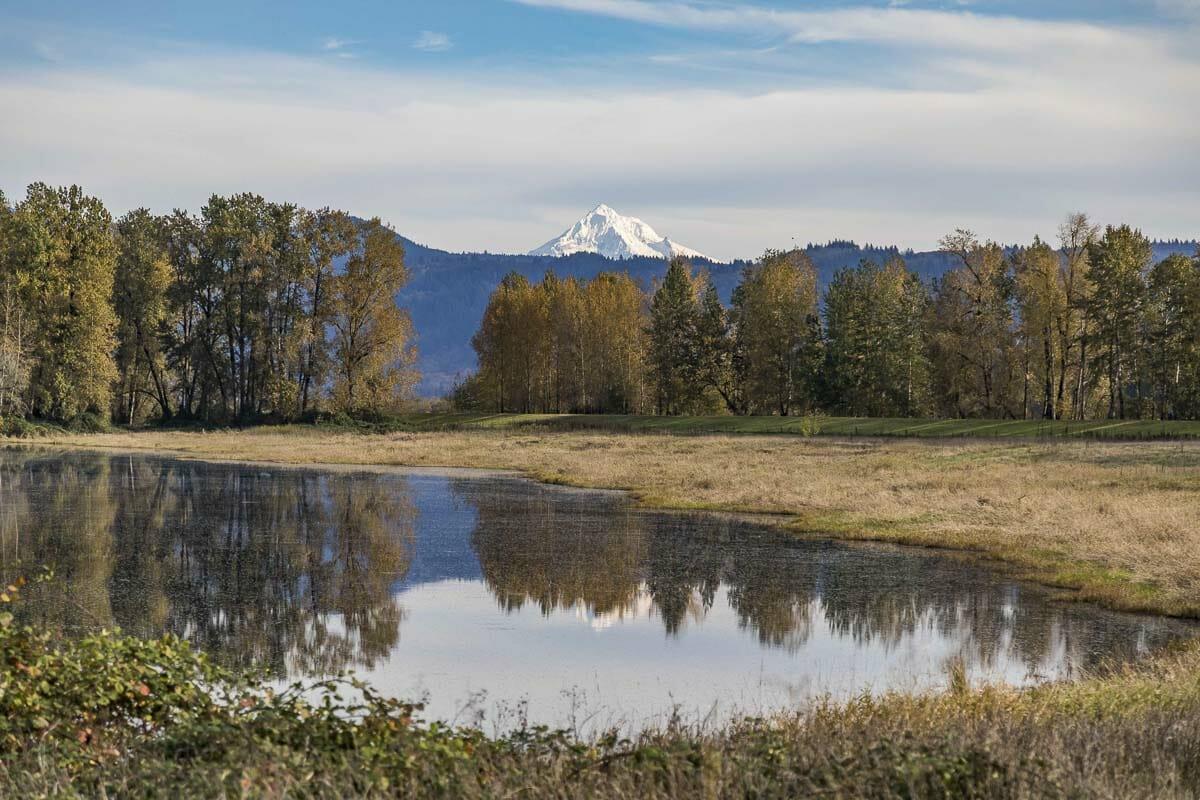 steigerwald lake