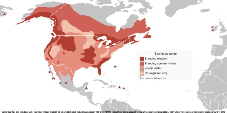 bald eagle north american locations
